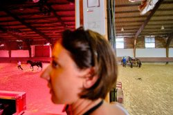 Image Andrès Roé équitation